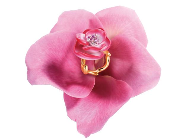 내 손위에 피어난 반짝이는 꽃송이