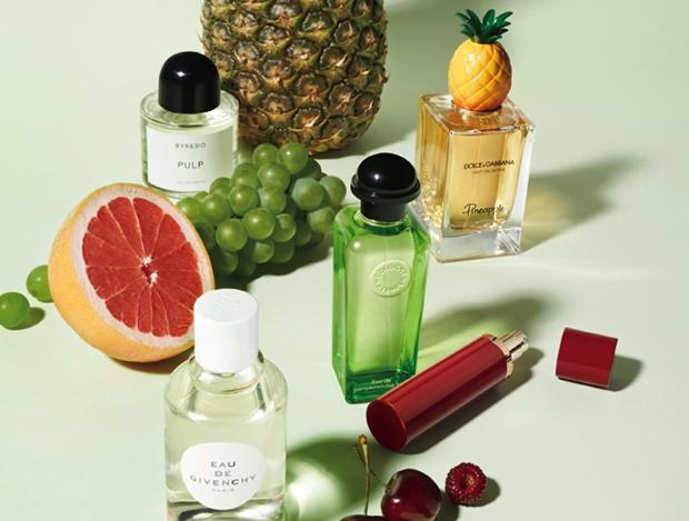향으로 만든 여름 과일의 다채로움
