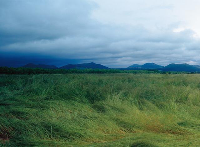 그 섬에, 바람이 분다